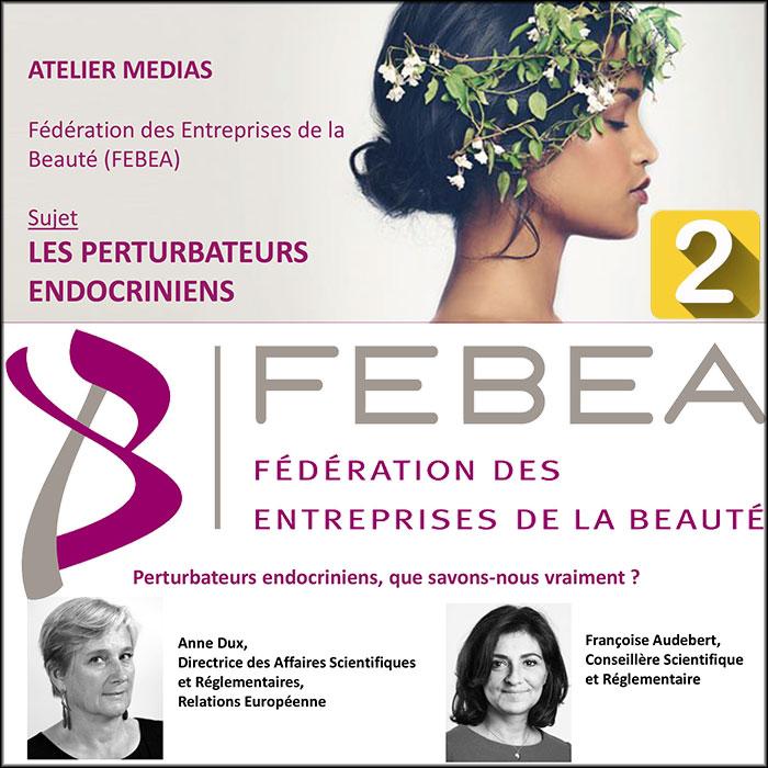 FEBEA's press workshop on endocrine disruptors