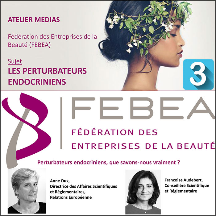 FEBEA's press workshop on endocrine disruptors