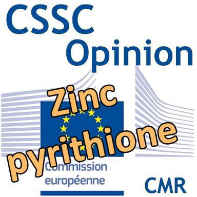 Zinc pyrithione : Opinion du CSSC