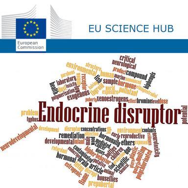 """Réglementation européenne des perturbateurs endocriniens : de """"la place pour des améliorations"""", selon le JRC"""