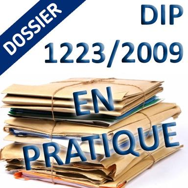 Dossier DIP pratique