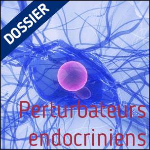Dossier Perturbateurs endocriniens