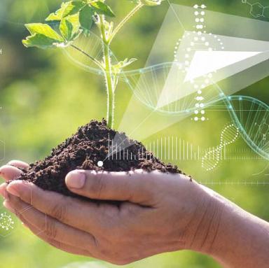 DN & Cosmétique : un consortium pour la traçabilité des ressources naturelles