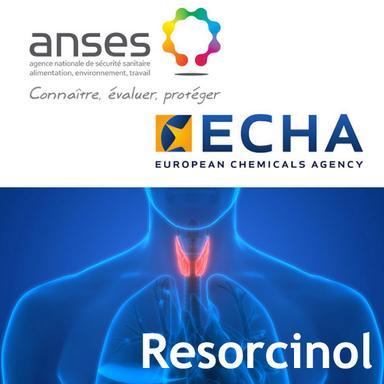 ECHA : le Comité des États membres ne valide pas la classification du résorcinol en SVHC