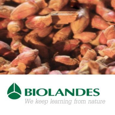 Les nouveaux extraits naturels de Biolandes
