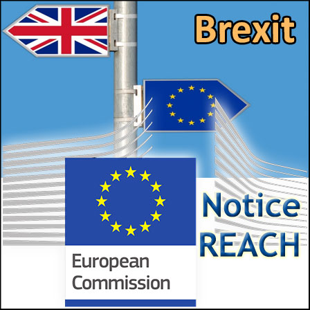 Brexit: the impacts on REACH