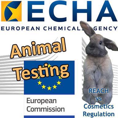 REACH : Des tests sur animaux justifiés pour des ingrédients uniquement cosmétiques