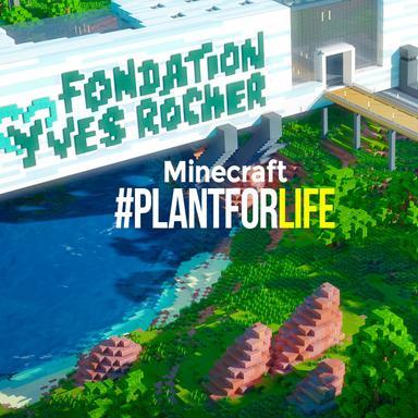 La fondation Yves Rocher se mobilise pour la reforestation