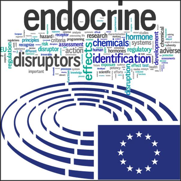 European Parliament resolution for a comprehensive framework on endocrine disruptors