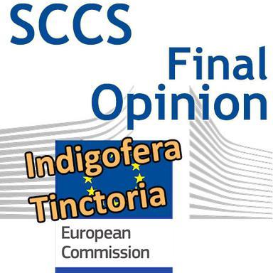 Indigofera tinctoria : Opinion finale du CSSC