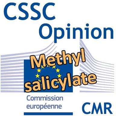 Methyl salicylate : Opinion préliminaire du CSSC