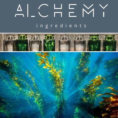 Clearthix S, le nouvel épaississant d'Alchemy Ingredients