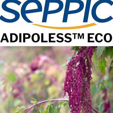 Adipoless Eco : une version naturelle de l'Adipoless de SEPPIC