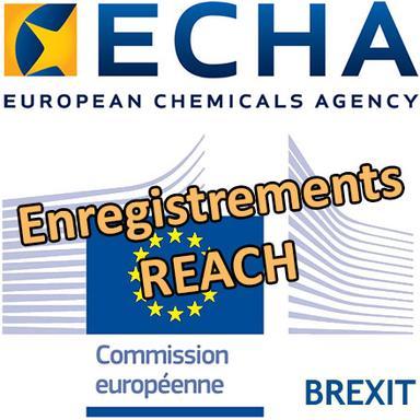 Brexit : le transfert des enregistrements REACH doit être terminé avant fin mars
