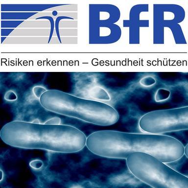 Le BfR alerte sur la présence de la bactérie Pluralibacter gergoviae dans les cosmétiques