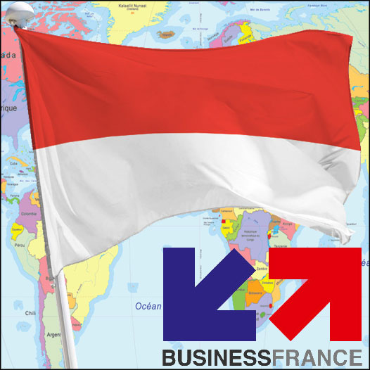 International regulations: Revision of Indonesian cosmetic regulations