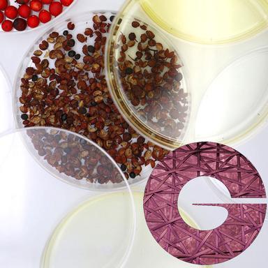 Zanthalene de Givaudan : un actif phyto-botox réconfortant