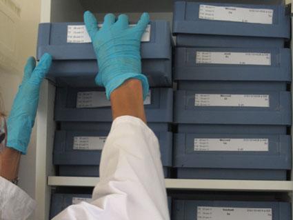 Les échantillons cosmétiques envoyés ou prélevés chez le client par SGS sont stockés en chambre froide par mini-palette.
