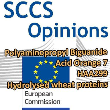 CSSC 6e plénière : 4 Opinions en consultation