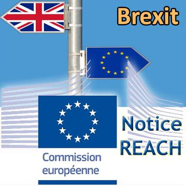 Brexit : les impacts sur REACH