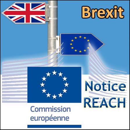 Brexit: les impacts sur REACH