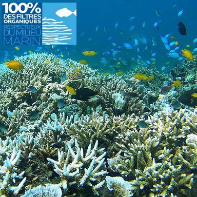 Ces filtres UV qui n'altèrent pas les coraux
