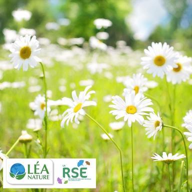 RSE : les engagements de Léa Nature