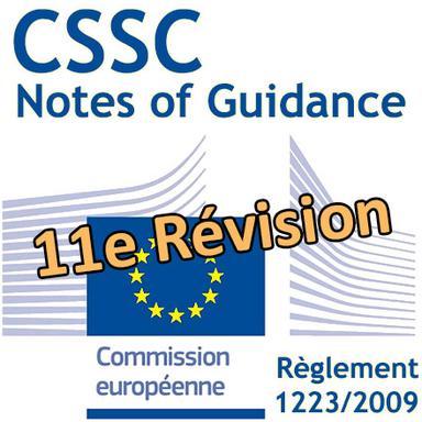 Évaluation de la sécurité : 11e révision des lignes directrices du CSSC