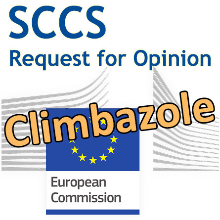 Climbazole: Request for an addendum to the SCCS' Opinion