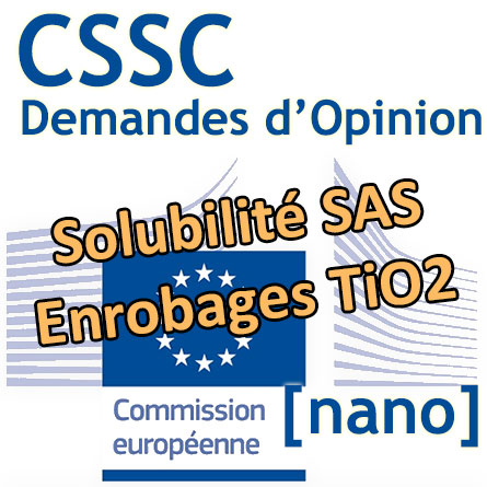 Logo Commission européenne - Demande CSSC SAS TiO2