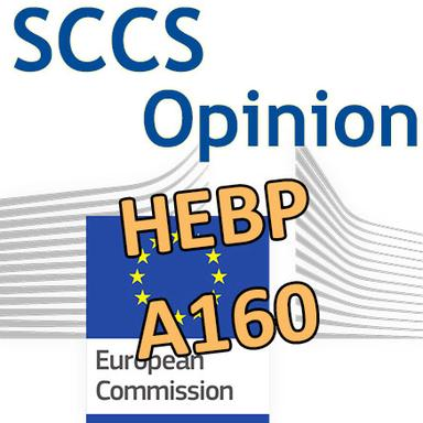HEPB, A160 : Opinions du CSSC