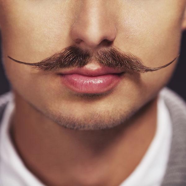 La moustache de Movember
